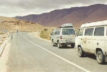 Michael fotographiert sein erstes Kamel in Marokko, auf dem Weg von Figuig nach Bouarfa